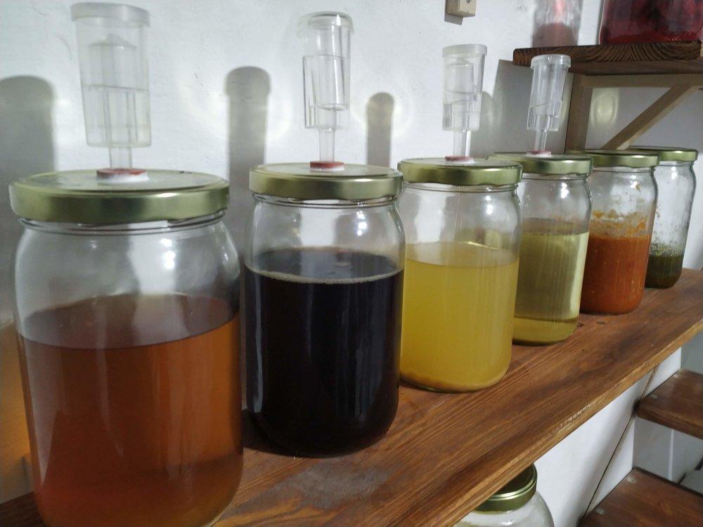 Hidromieles fermentando en las instalaciones de KamideDeus en Calle Palau numero 6