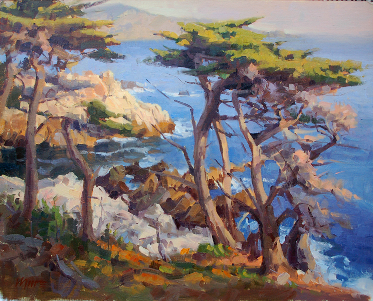 the california cypress