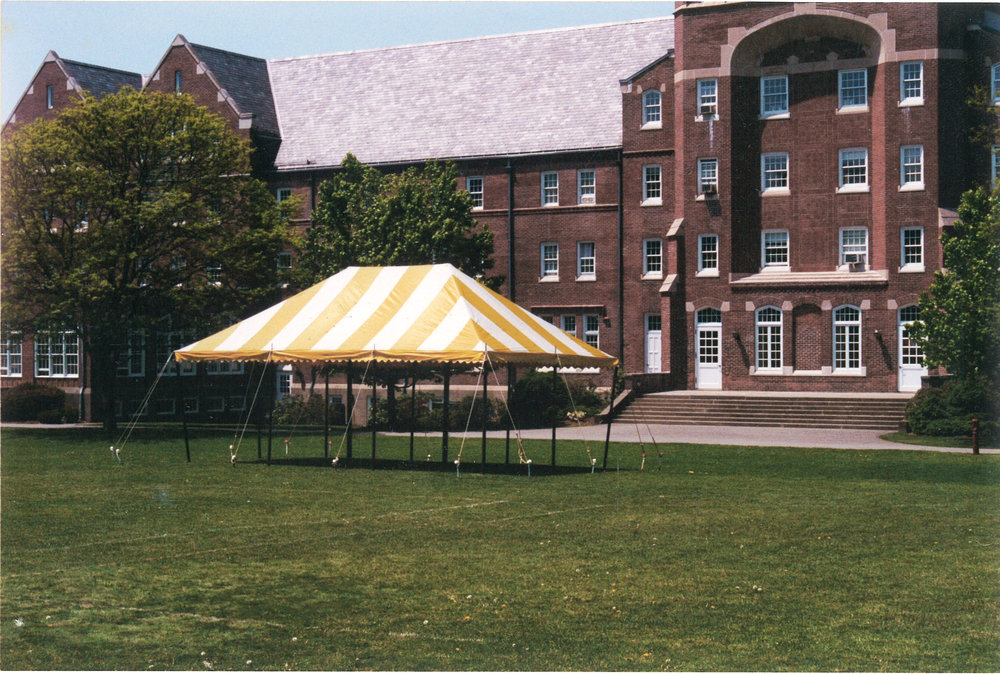 M10340 Yellow tent scan.jpg