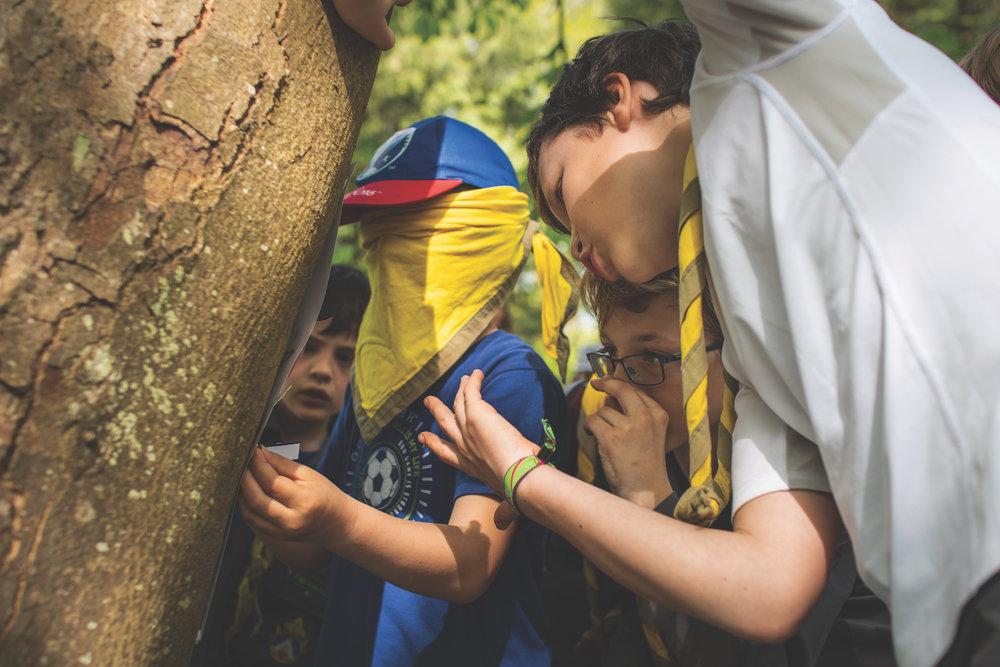 Nos activités - Rire ensembleRegarder plus loin que le bout de nos nezDécouvrir de nouvelles chosesCohésion et amitiéTechniques de scoutsJeux et divertissementsCuisinerVivre dans la forêt
