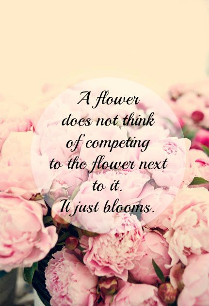 aa46fc79167380c23601e37ac8acb1b6--tattoo-quotes-flowers-garden
