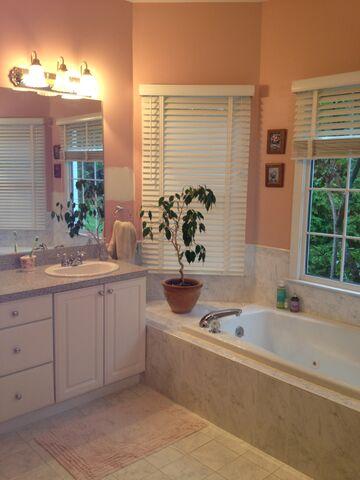 bathroom remodel 2 - before