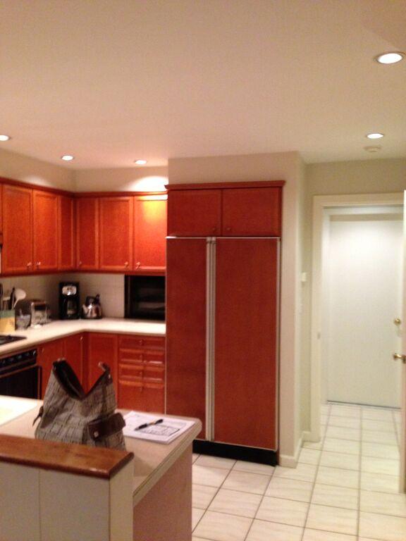 Before photo - boston brownstone renovation - kitchen