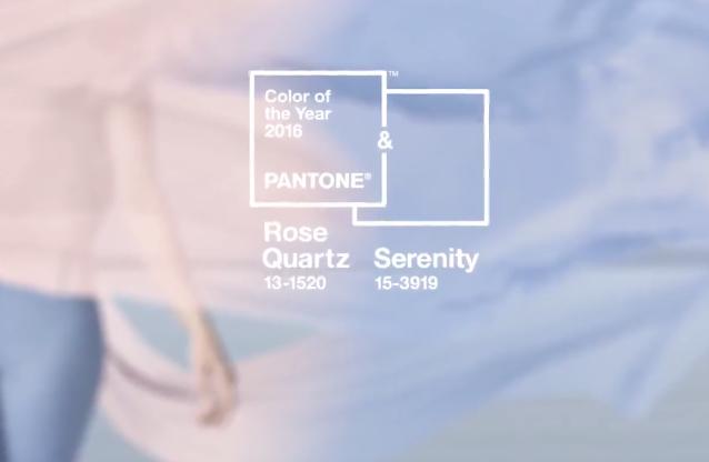 In- 5. Pantone