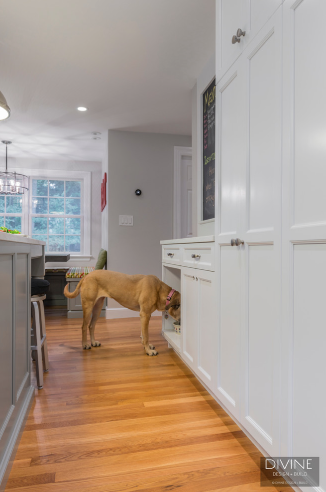 dog-bowl-area-in-kitchen