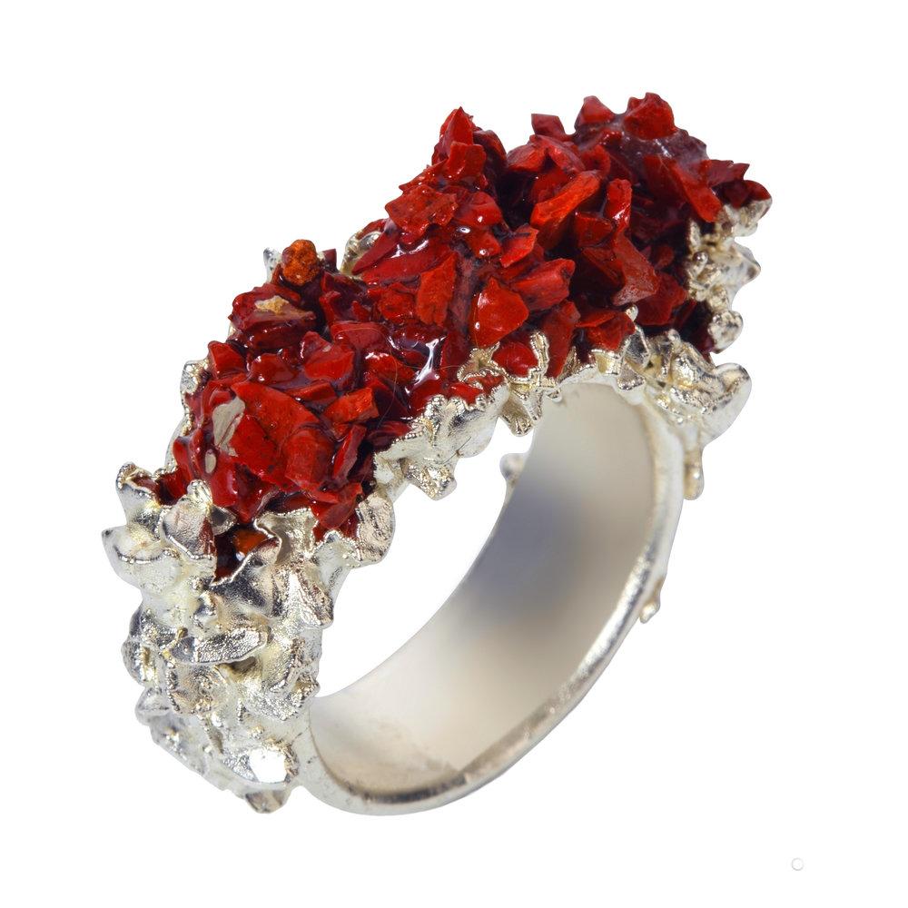 Ring by Jo Baker