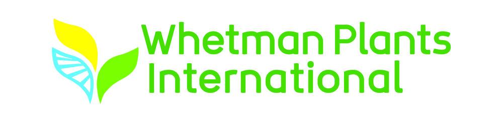 Whetman - Logo.jpg