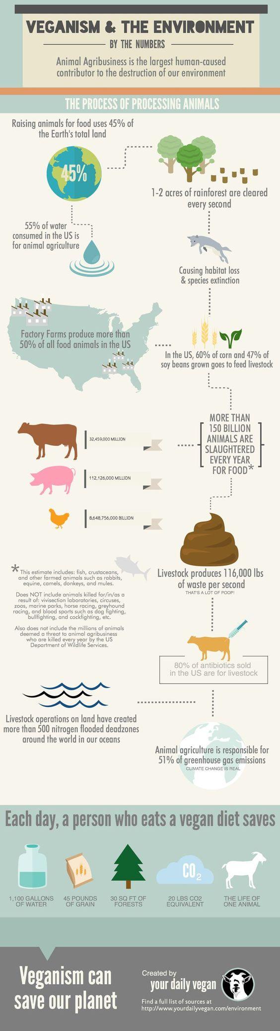vegan and the planet.jpg