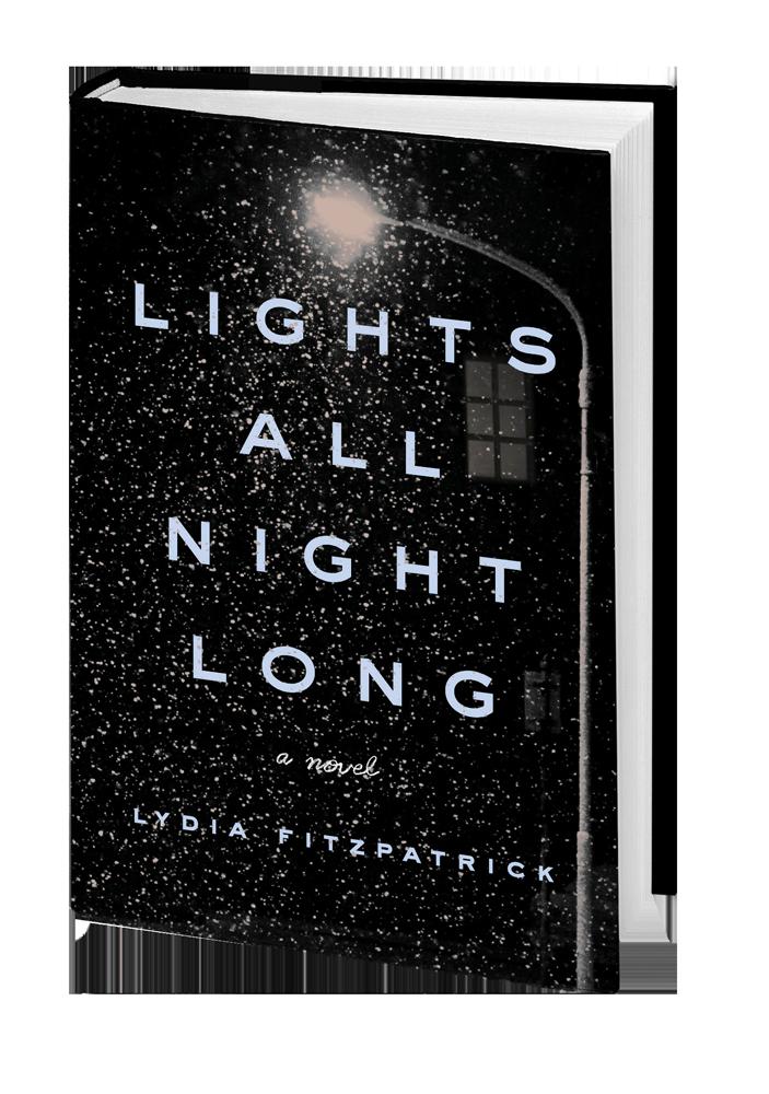 Lights All Night Long 3d book shot.png
