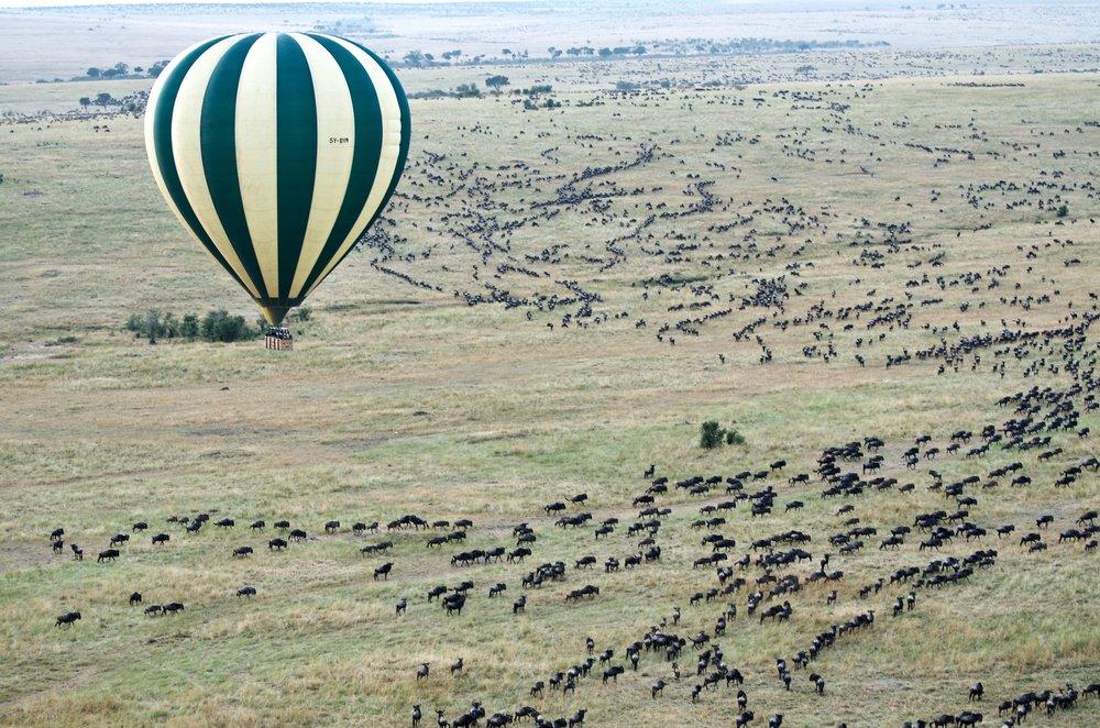 jason-hafso-533238-unsplash-Masai Mara National Reserve, Kenya.jpg