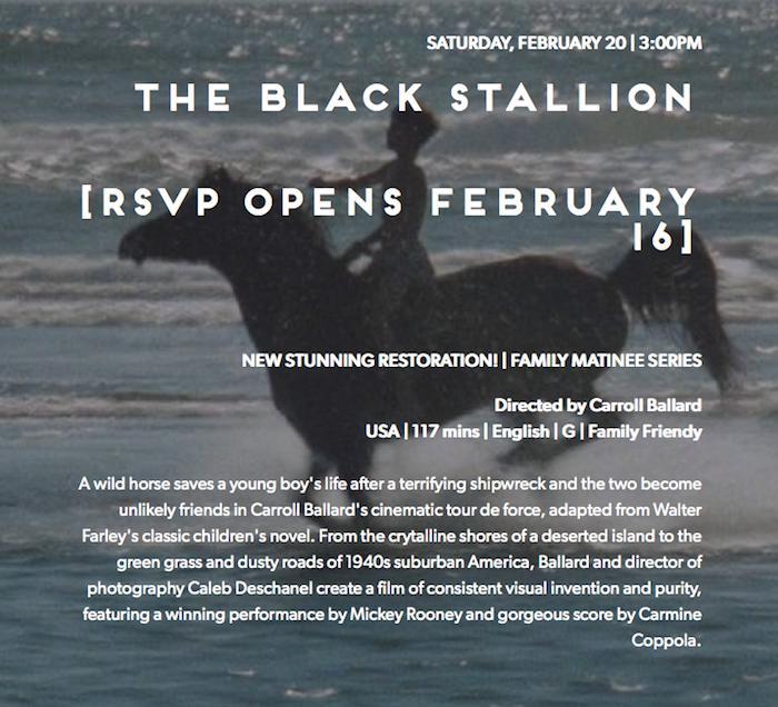 The+Black+Stallion.jpg