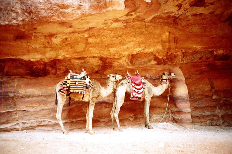 Photo by Hind Mezaina taken in Petra, Jordan.