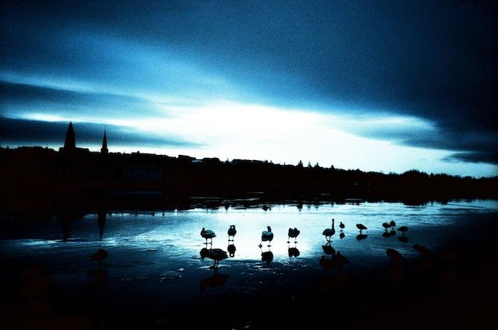 Reykjavik+Lake+04_Hind+Mezaina.jpg