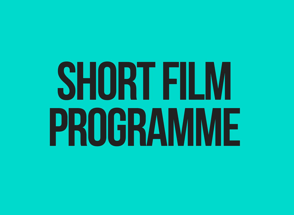SHORT FILM PROGRAMME + Q&A with curator Joseph Fahim