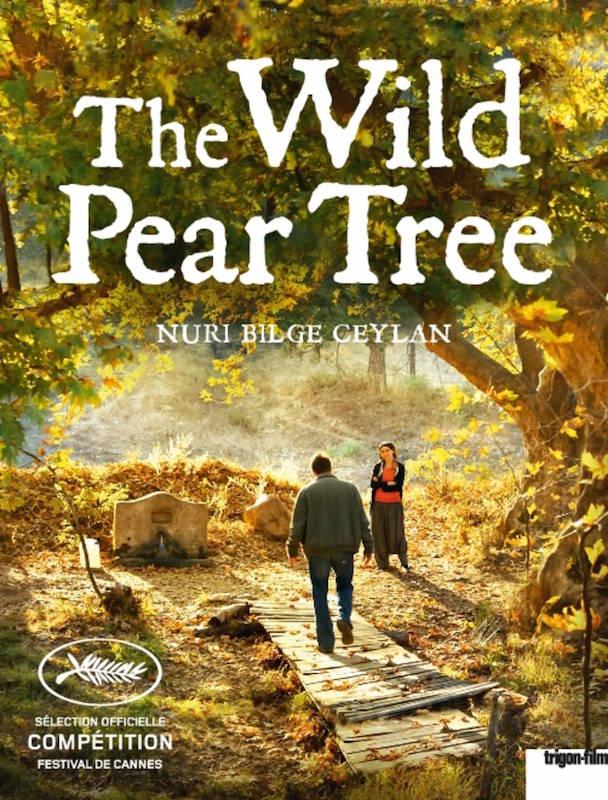 The Wild Pear Tree.jpg