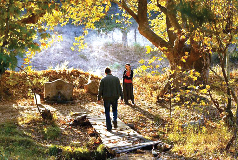 The Wild Tree (Nuri Bilge Ceylon, 2018)  A film that is rich with words and visuals. I particularly loved this autumn scene. About a man and his sense of worth as an artist.