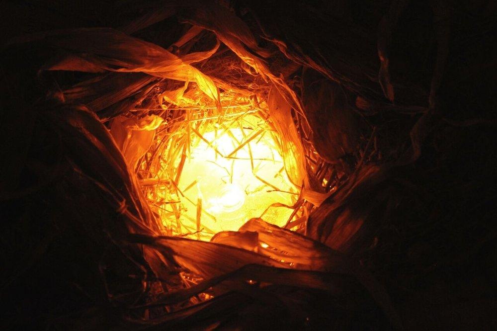 Lexie Stoia,  Corn Lodge , 2015, Straw, cornstalks, glass, light, sound