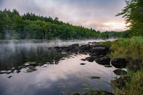 Mist rises over a creek bed in Nova Scotia. Photo by Dr. Robert Balchick.