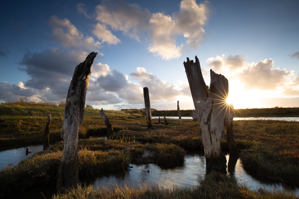 Thoroughly Thornham, Thornham Harbour, Norfolk.