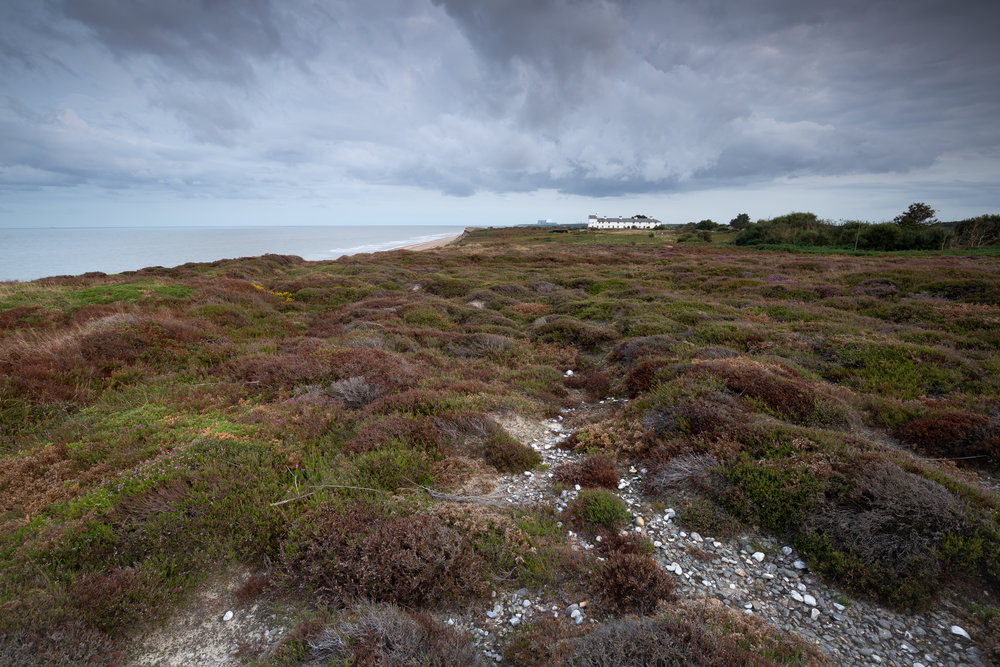 Shingle Line, Dunwich Heath, Suffolk.