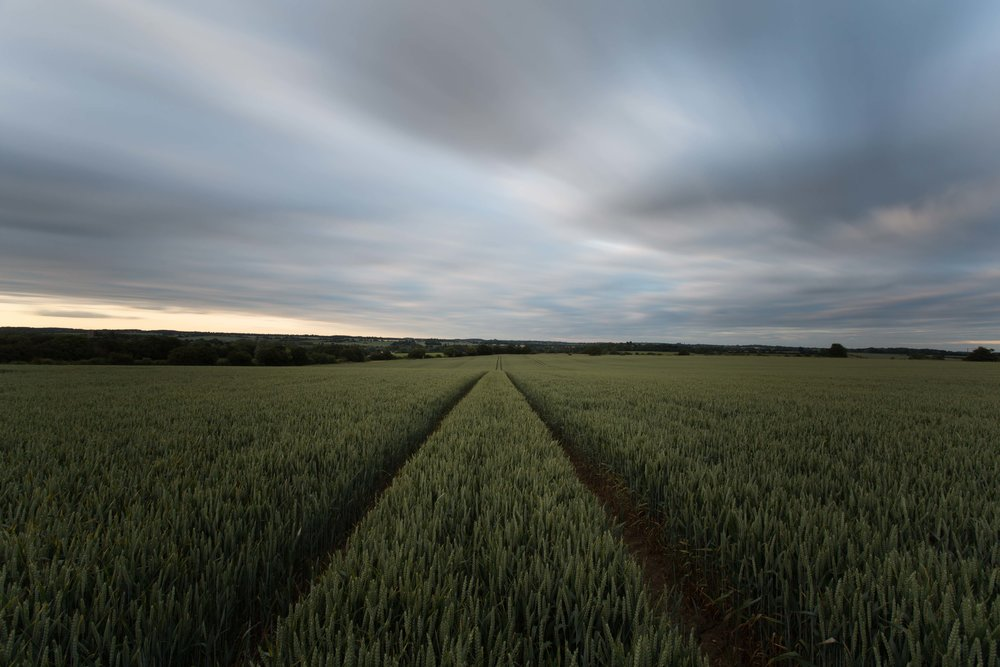 Tractor trilogy, Hadleigh/Lindsey, Suffolk.