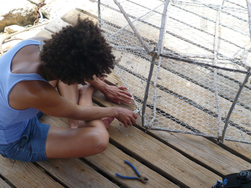 Designing a fish trap to reduce bycatch in Curacao - 2008 - Courtesy: Ayana Elizabeth Johnson