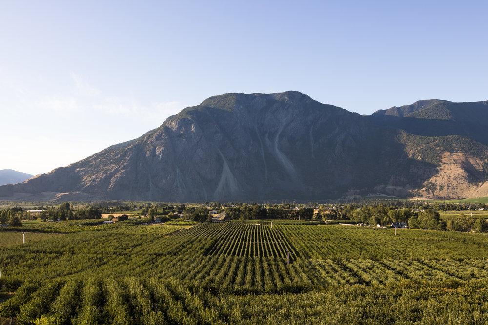 K Mountain, Keremeos | Photo Credit: Meghan Reading