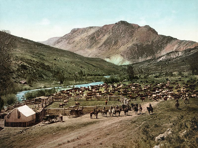 1898: Colorado. Rassemblement.  Source : https://www.vintag.es