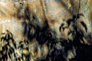 Derelict 21 of 15 Lynda Beckett.jpg