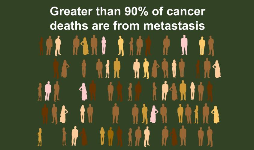 IxChel Scientific | Metastasis Explainer Video