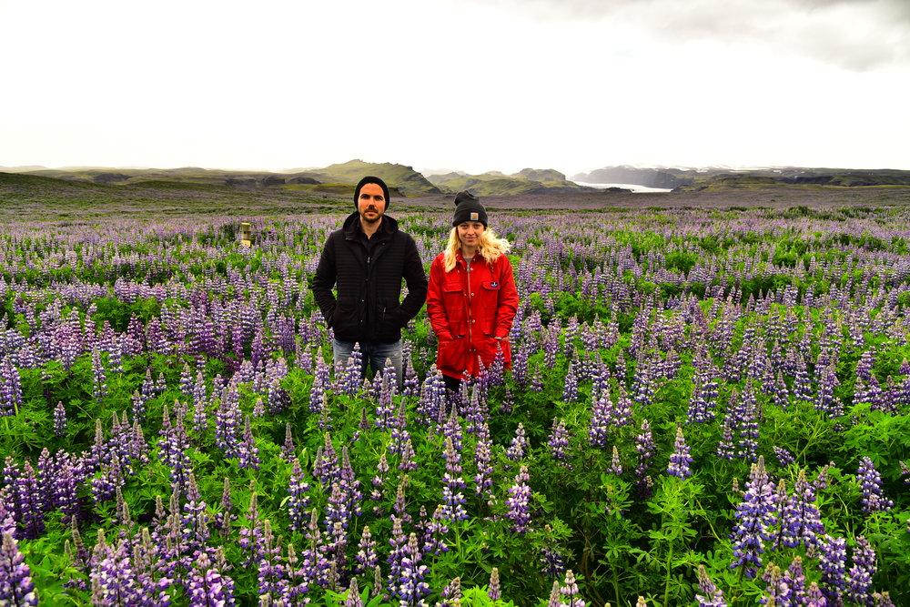 Iceland - for Taking detours on roadtrips