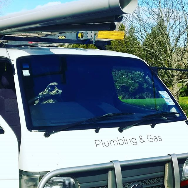 Plumbing or Gas emergency? Don't worry Mr Seal is on the road. Call Seal Plumbing 021797912  #plumber #plumbers #renovation #professional #repair #tradesman #maintenance #naturalgas #gasfitter #gasfitters #gasfitting #worldplumbers #auckland #aucklandcity #hernebay #greylynn #ponsonby