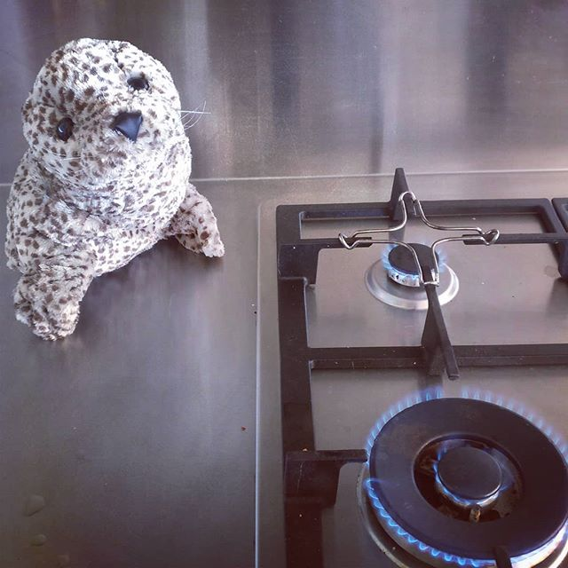 If you wish to change your hob, you know who to call... Mr Seal, of course ! 021 79 79 12  #plumber #plumbers #renovation #professional #repair #tradesman #maintenance #naturalgas #gasfitter #gasfitters #gasfitting #worldplumbers #auckland #aucklandcity #northshore #rodney