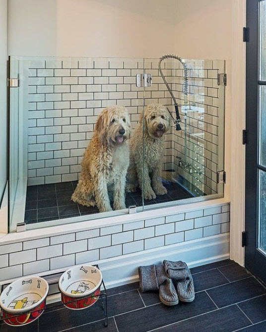 Look how cute these two are! They don't even seem to mind an impending bath all that much in their lovely – and handy - dog wash.