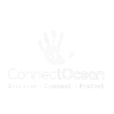 Connect Ocean Conservation and Outreach