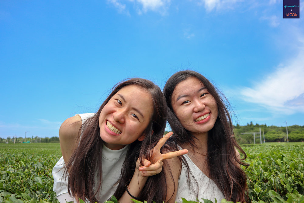 jenny and tina taking photo in the middle of ไร่ชาเขียว O'Sulloc เกาะเชจู