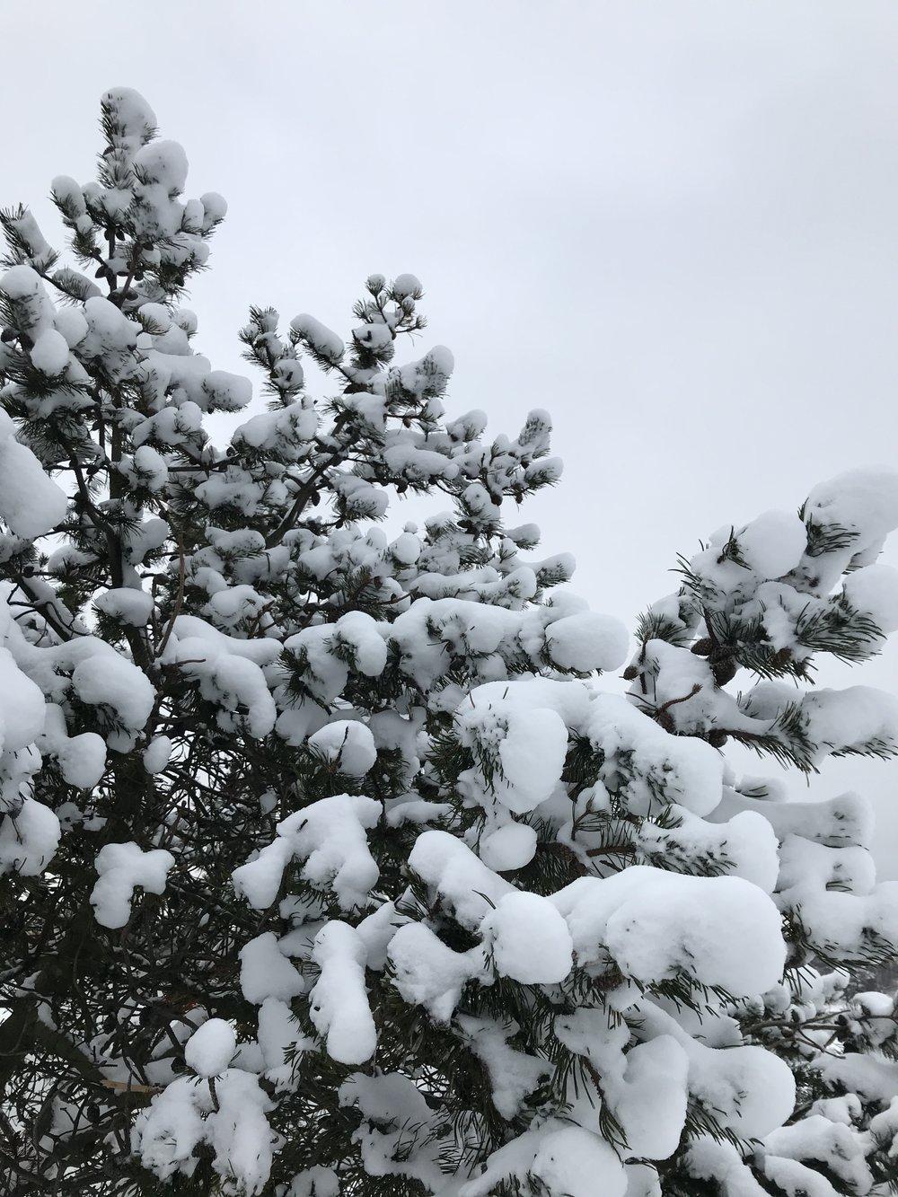 Painolastia Uunisaaressa, tammikuussa 2019.