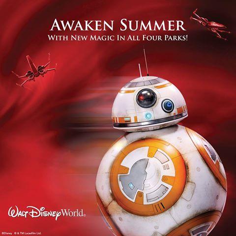awaken summer 1