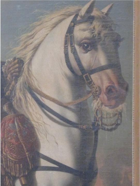 Détail du cheval de guerre du Marquis de Courtomer tiré de son portrait au Château de Courtomer.