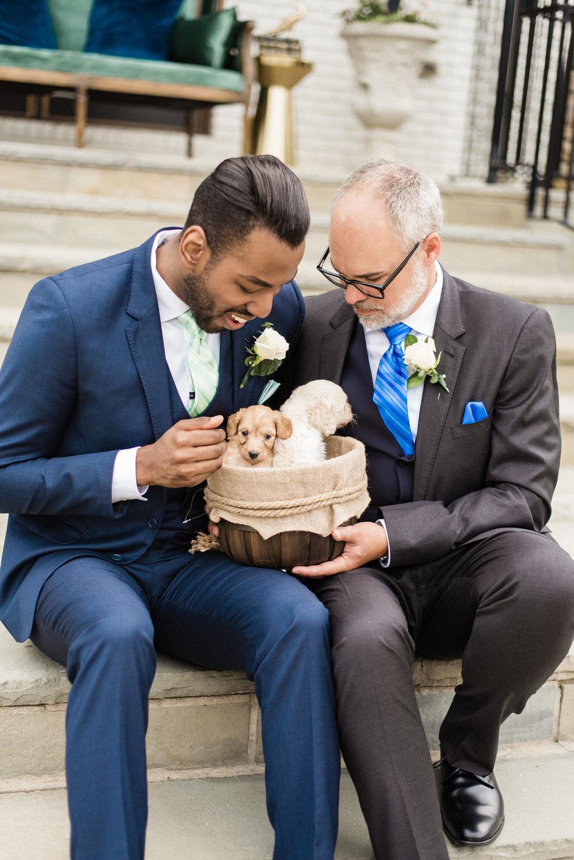O DESSA JAMES PHOTOGRAPHY | CHESTNUT HILLS LABRADOODLES | GENERATION TUX | GAY WEDDING | MANOR HOUSE CINCINNATI | SAME SEX WEDDING