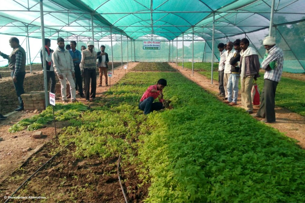 Enabling farmers to adapt agri-technologies to local contexts.jpg