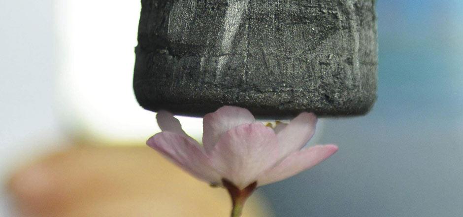 aerogel-flower_940