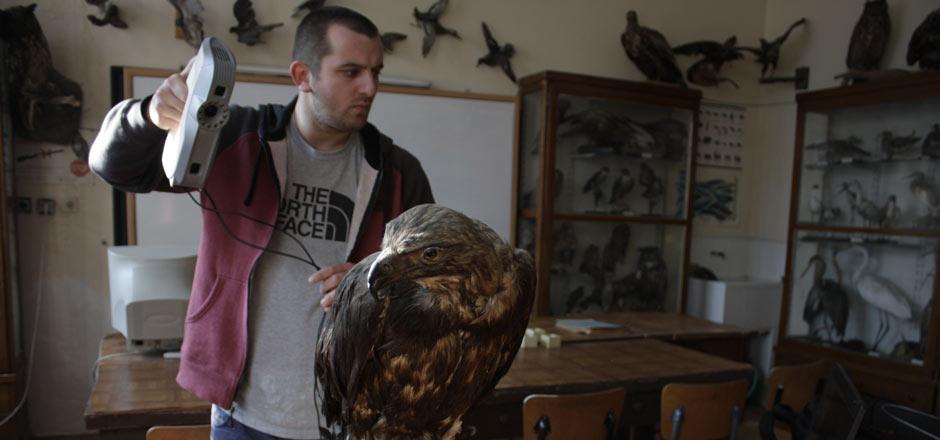 3D Scanning Endangered Species