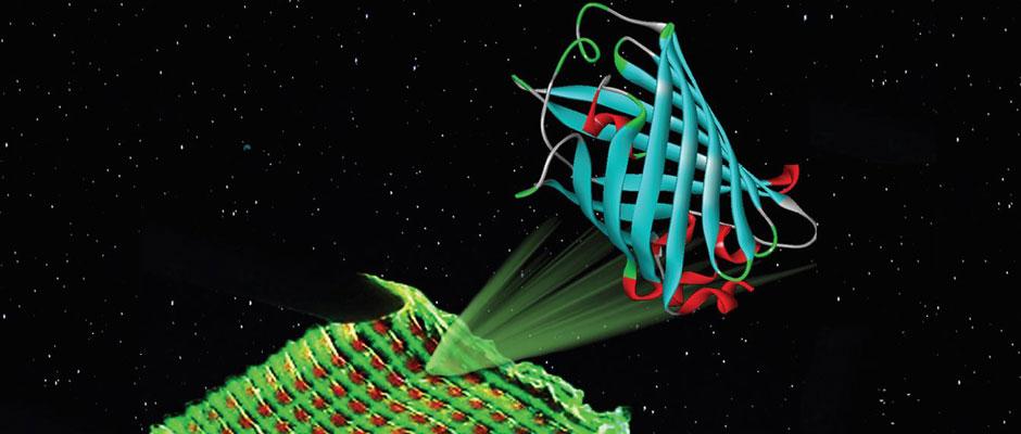 3D Printing LED Bio luminescence