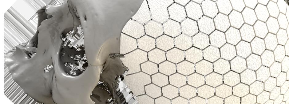 3D Printing Cranium