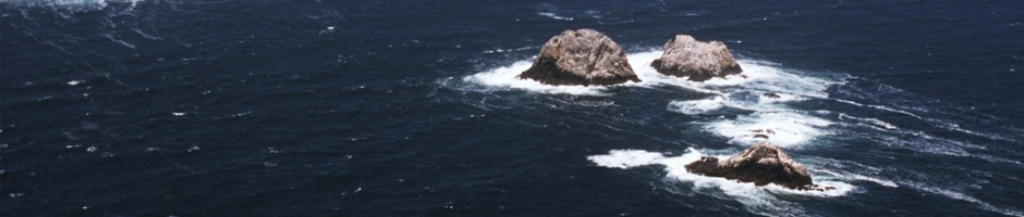 MBARI-Blog-(Farallon-Islands)