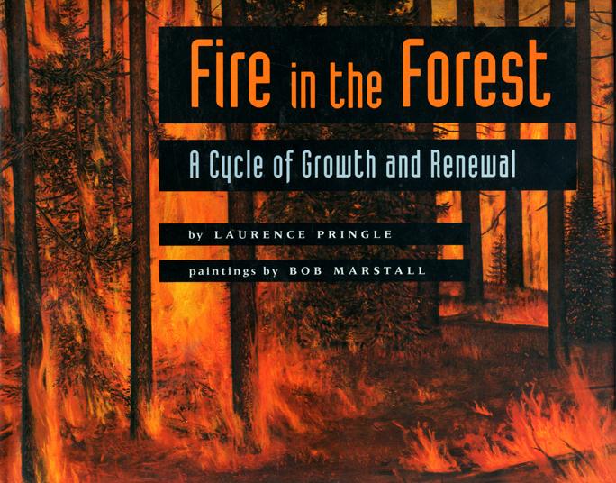 FireintheForestcover_000.jpg