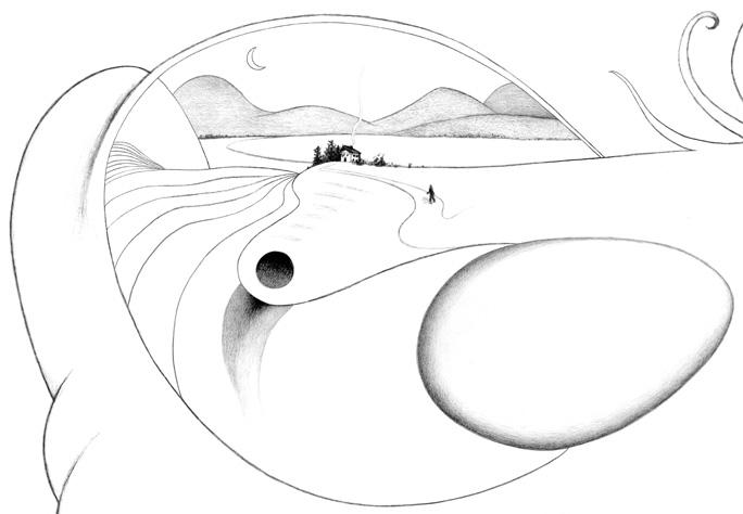 On Bird Hill detail.jpg