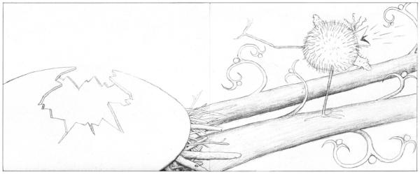 05 p 24-25 sketch re-do.jpg