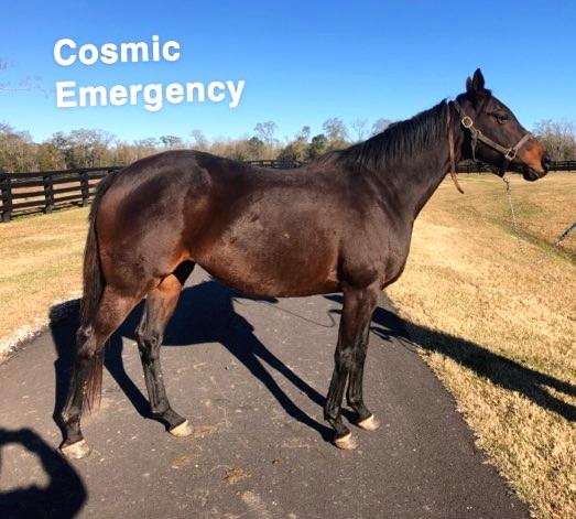 Cosmic+Emergency.jpg
